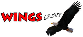 WINGS GROUP - your laser shooting ranges vendor
